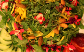 Springtime Salad wide