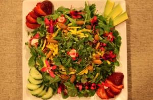 spring salad wider1
