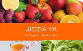 Juicing 101 Free Bonus Book